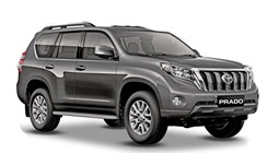 Toyota Land Cruiser 4x4 or similar